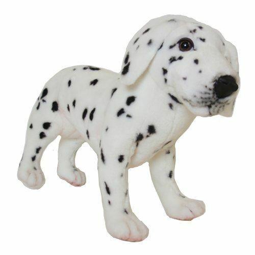 True-to-Life Dalmatian Puppy | Hawaii USA