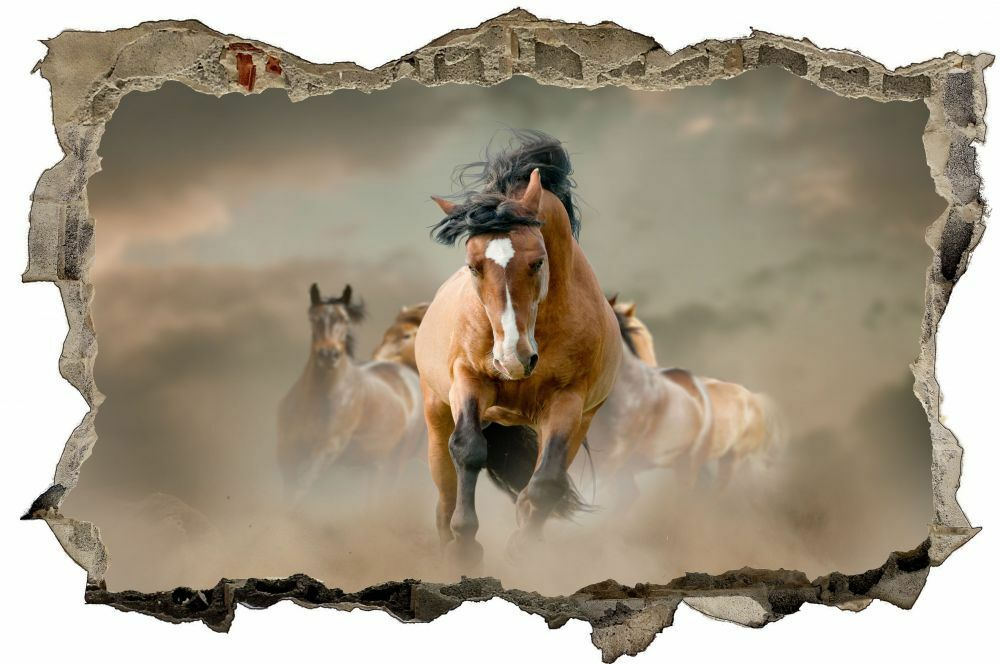 CHEVAL horse nature Mural Sauvage Nature Mural nature Sticker Autocollant d0132 42341b