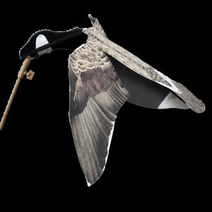 Goose-Decoy-SILLOSOCKS-HYPAFLAP-Canada-Goose-Decoy