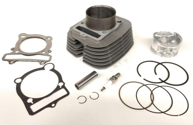 Cylinder Piston Gasket Top End Kit for Yamaha Warrior 350 1987-2004