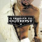 A Tribute to Outkast by Various Artists (CD, Jan-2004, Big Eye Music)