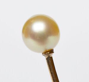 Aparte Krawattennadel Anstecknadel 14 Karat 585 Gold Perle Länge 6,7 Cm Um 1900