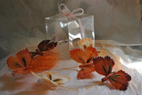 Boîte 6 papillons Ton roux rouille pêche plumes naturelles decoration de table