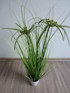 zyperngras papyrus gras kunstpflanze dekopflanze h 50 cm. Black Bedroom Furniture Sets. Home Design Ideas