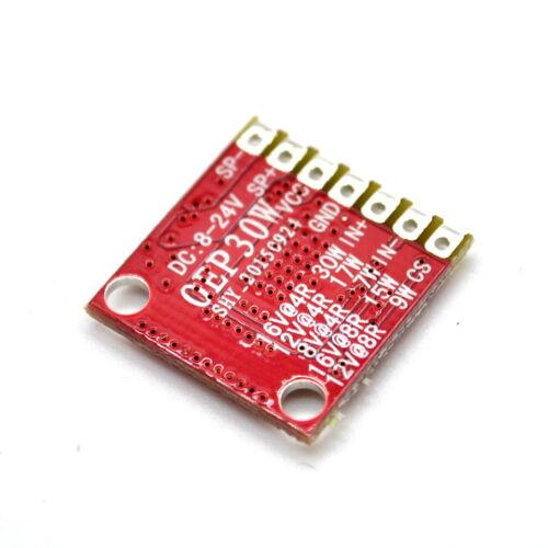 1PCS 20W//30W//50W//60W D Class Mono Digital Amplifier Board Module