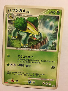 Pokemon Card Carte Grotle Promo 034dp P Ebay