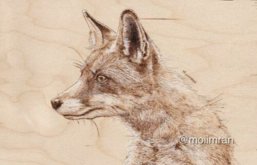 NEW Pyrography Wood Burning Art Collection Animal Wildlife Artist Artwork