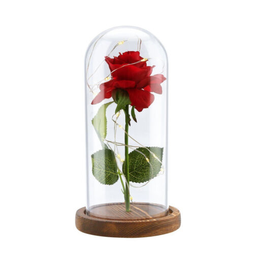 Beauty And The Beast Enchanted Rose Glass Dome LED Lighted Wedding Decor Gift CN