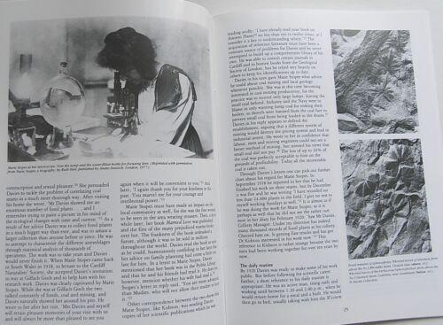 1982 FOSSIL PLANTS from WALES Welsh Coal Mining Geology Gilfach Goch Rhondda