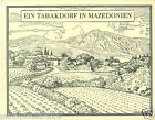 Macédoine cultivation Macedonia TOBACCO HISTORY HISTOIRE DU TABAC IMAGE CARD 30s