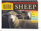 Storey's Barn Guide to Sheep by Judy Pangman (Spiral bound, 2006)
