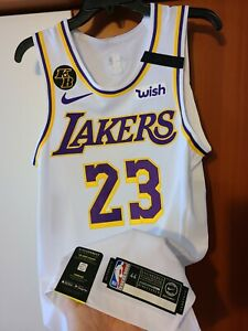 Lebron James 2019-20 Los Angeles Lakers Nike Authentic Jersey 44 ...