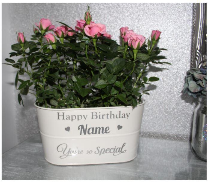 Etiqueta engomada de la Caja de Flores, Jardín de estaño la Etiqueta Engomada, Adhesivo para la Caja, Caja De Flores Personalizado