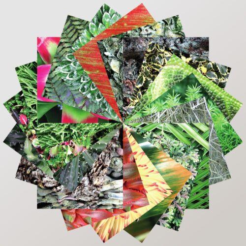 Papel De Origami200 Hojas 15cm Cuadradopatrones de flor Colección Completa