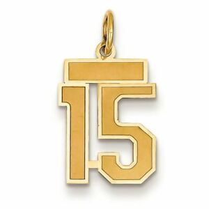 14K Yellow Gold Small Satin Number 15 Charm