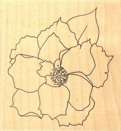 Rose Flower Bloom Wood Mounted Rubber Stamp IMPRESSION OBSESSION E13318 New