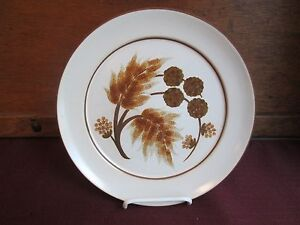 Image is loading DENBY-COTSWOLD-DINNER-PLATE-10-034-0709I : denby cotswold dinnerware - pezcame.com