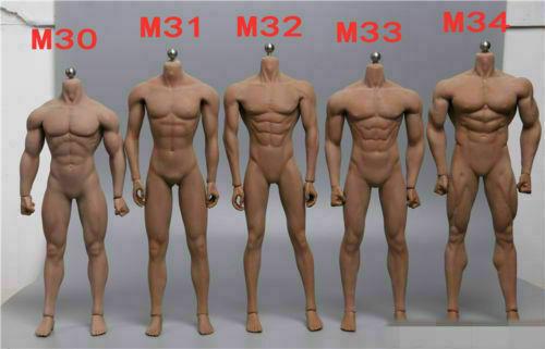 TBLeague 1//6 Phicen Male Body Figure Seamless Doll Model M30 M31 M32 M33 M34 Toy