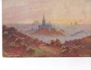 Jarrolds-postcard-Norwich-from-Mousehold-Heath-Hayward-Young