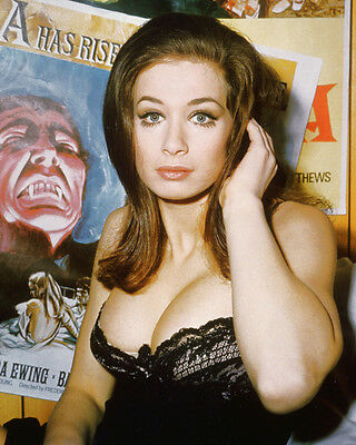VALERIE LEON SEXY COLOR 8X10 PHOTO VERY BUSTY HAMMER