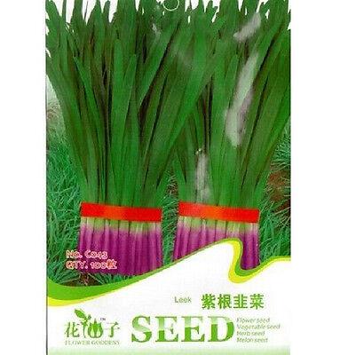FD1286 Purple Leek Seed Vegetable Seeds Green Food ~1 Pack 100 Seeds~ Free Ship
