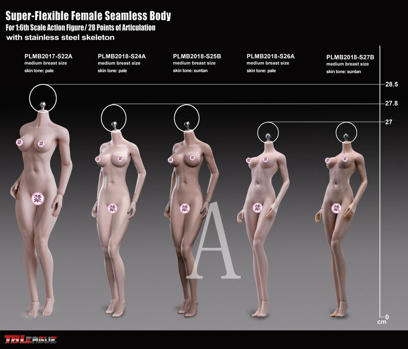 Phicen 1/6 Steel Skeleton Seamless Pale Mid Bust S26A Female Body Toy TBLeague