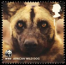 """GREAT BRITAIN 2891 - World Wildlife Fund """"African Hunting Dog"""" (pa57450)"""