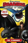 Dreamworks' Dragons: Riders of Berk: v.4: How to Train Your Dragon TV by Titan Comics, Simon Furman (Paperback, 2015)