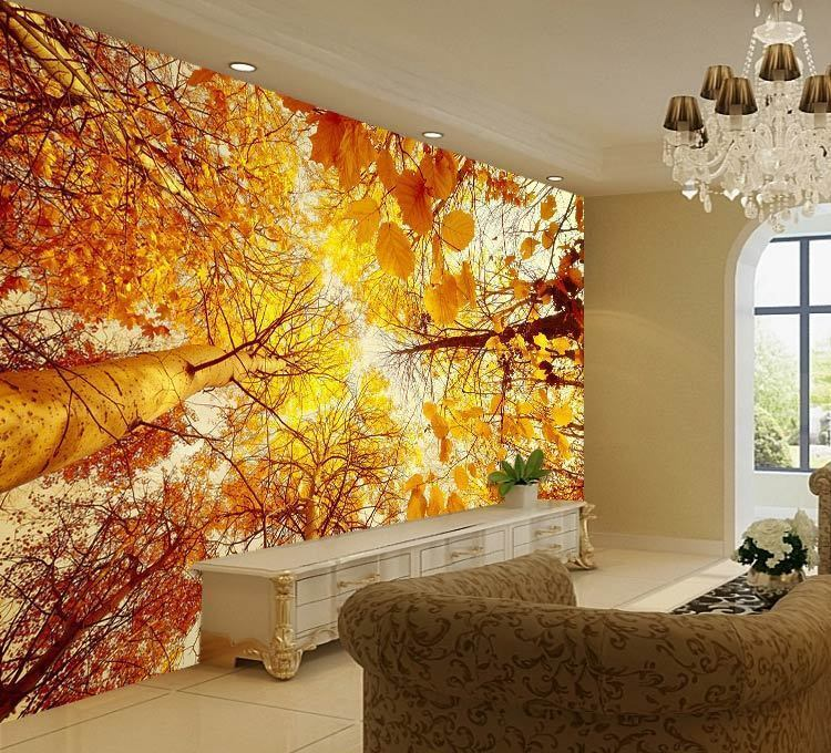 Autumn Trees Looking Up Sky Full Wall Mural Photo Wallpaper Print Home 3D Decal