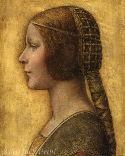 La Bella Principessa by Leonardo da Vinci The Beautiful Princess 8x10 Print 1506
