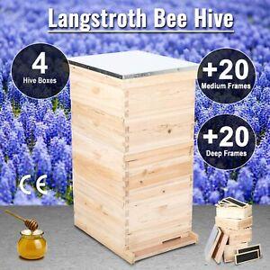 20 Deep 20 Medium 40-Frame Size Beekeeping Kit Bee Hive House Frame Beehive