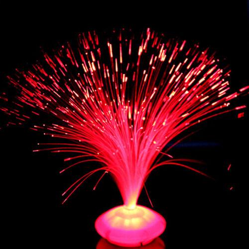 Color Changing LED Fiber Optic Night Light Lamp PRand Home Decoration nb