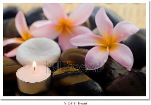 Wall Art Home Decor Poster Aromatherapy And Spa Relaxation Art//Canvas Print