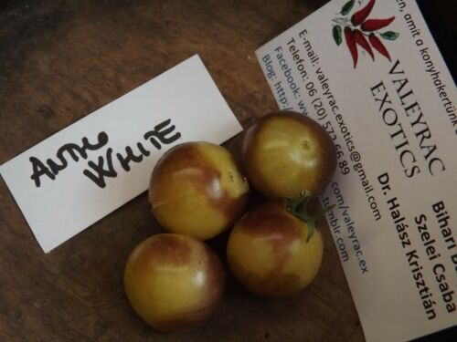 HONIGSÜßE BLAUE KIRSCHTOMATE WEIß Tomate Saatgut 5+ Samen Antho White