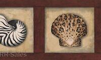 Wood Seashell Animal Print Sea Shells Nautical Bath Beach Wall Wallpaper Border
