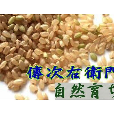 "DENJIUEMON ""KOSHIHIKARI"" Japanese Brown Rice Short Grain PEP 1-10 kg F/S Japan"