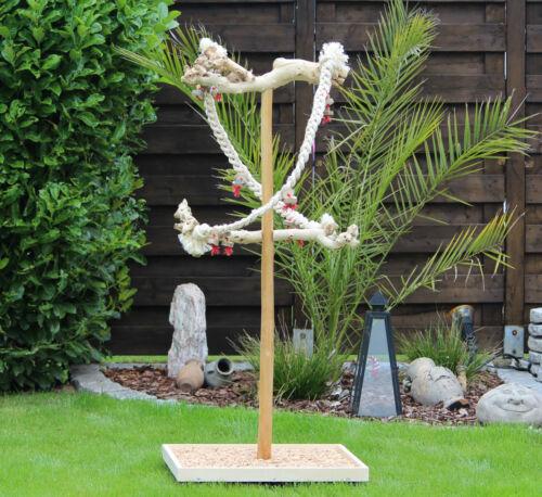 Siège en perroquet en bois, loupe de Java, avec ponts de suspension en sisal * nouveau *