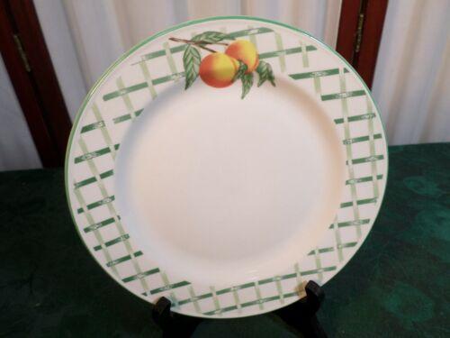 NIB-4pc Beautiful Citation Garden Trellis Stoneware Place Setting-Plate//Bowl//Cup