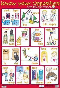 Details about A2 Opposites Poster/ educational / learning / literacy /  grammar