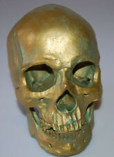 Lifesize 1:1 Realistic Human Skull Replica Model Anatomical Skeleton C#