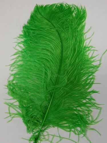 "KELLY GREEN for Hats//Bridal 2 PCs OSTRICH PLUMES 8/""-18/"" FEATHERS COLOR"