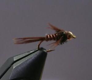 Pheasant Tail Nymph #14 One Dozen Premium Big Y Fly Co Trout Fishing Flies