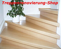 treppenrenovierung treppensanierung treppenstufe. Black Bedroom Furniture Sets. Home Design Ideas