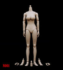 1:6 ZY Toys Female Big Breast Action Figure Body in Pale Skin US Seller #N001