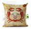 SIGNS-OF-THE-ZODIAC-Cushion-Covers-12-Deluxe-Astrology-Spiritual-Gift-45cm-UK thumbnail 8