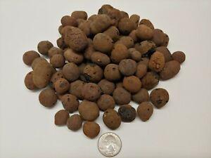 4 LBS Clay Pebbles Grow Media Expanded Rocks , Hydroponic Aquaponic , Hydroton