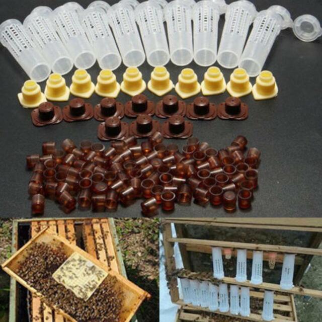 25pcs Bienenzucht Aufzucht Cup Kit Königin Biene Haar Roller Käfige Tool GE