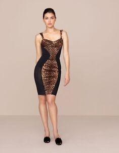Provocateur Large Leopard Agent Dress Bnwt Uk14 Bessie Size SwxzTzZ