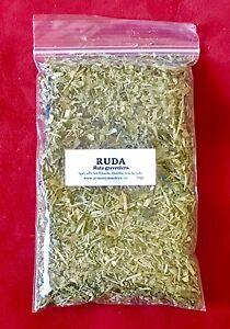 ☆☆☆ Ruda ☆☆☆ (planta Seca, Cortada Y Embasada) 20gr. Rue Dried Plant En Quantité LimitéE