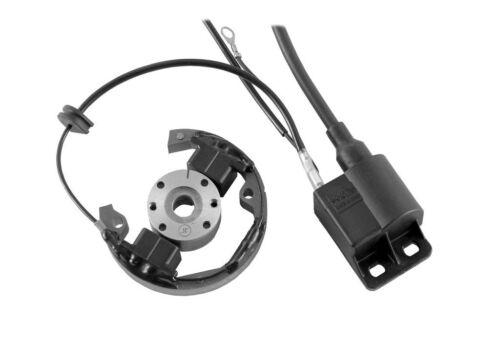 Selettra R2904 Zündung für KTM SX 50 Ignition Stator Rotor Spule Bobine Coil
